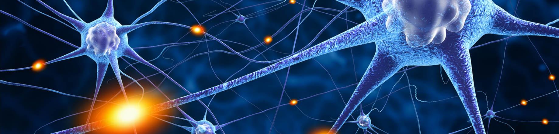 estimulación nervios